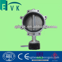 ANSI Stainless Steel 304 Lug Type Butterfly Valve