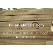 Chinese Eucalyptus plywood