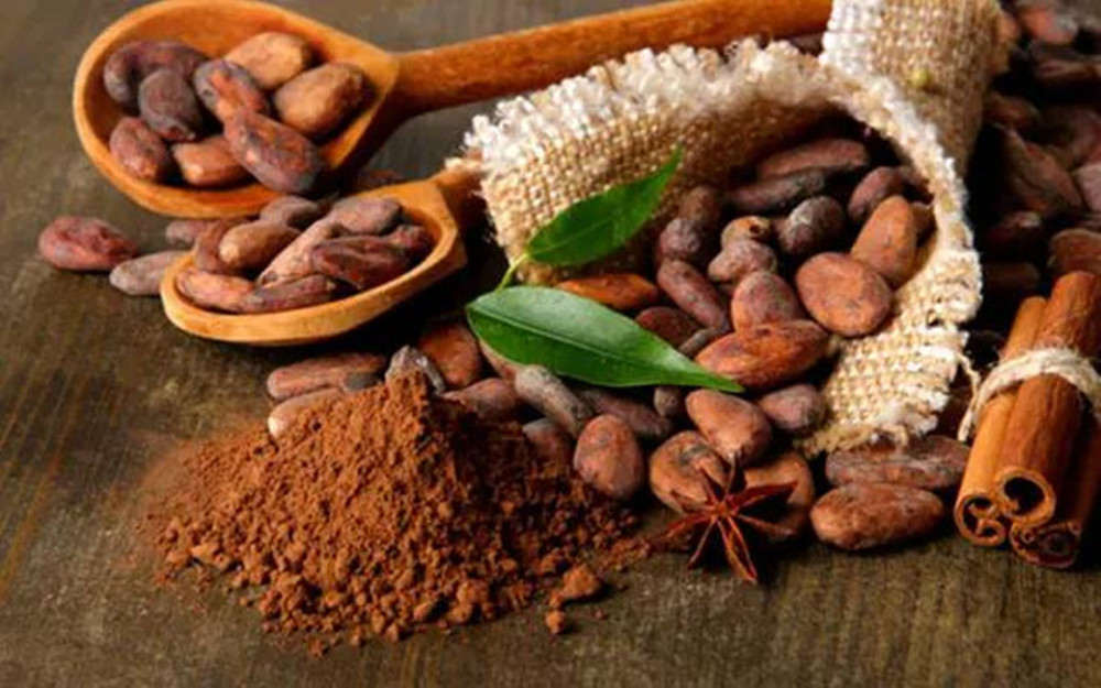 Cocoa and Chocolate Ingredients
