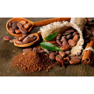 Ingredientes de cacau e chocolate