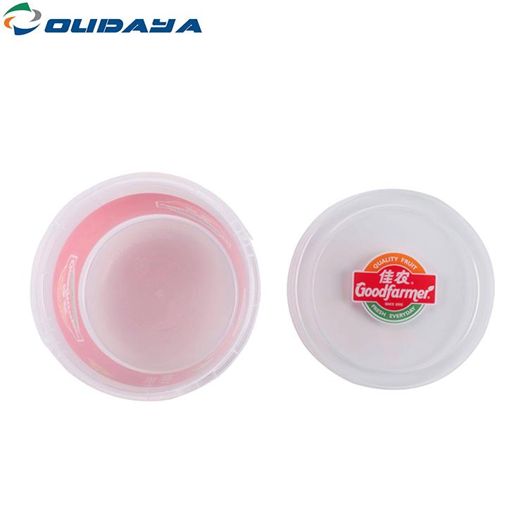 Plastic Food Ice Cream