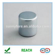 radiale Magnete permanente große Größe