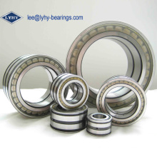 Doulbe Row Full Complement Cylindrical Bearing (NNCL4980CV)