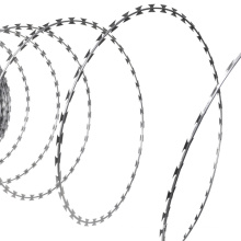 China Wholesale Galvanized Concertina Razor Wire Fence (RWF)