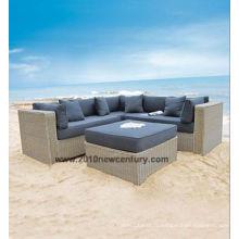 Sofa de meubles d'extérieur / de jardin / loisirs (6005)
