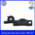 Black Coated Pillow Block Bearings Industry Use (UCF 202)