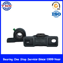 Most Popular and High Professional Pillow Block Bearing (UCP 207)