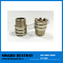 Ningbo Bestway Sechskant Innengewinde PPR Einsatz (BW-722)