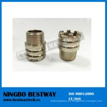 Inserto hexagonal femenino de rosca PPR de Ningbo Bestway (BW-722)