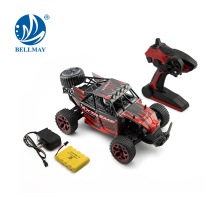 Hot Selling1:18 2.4GHz RC Car High Power Driving with Radio System Bring More Fun
