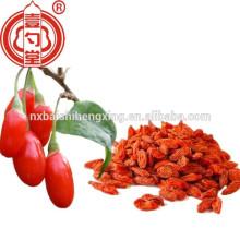 Ningxia superior Saúde Red goji berry (Gou Qi) fructus lycii