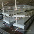 Design Broiler Chicken Cages