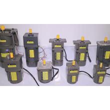 Motor de inducción 6W 220V Motor de engranajes de CA pequeño