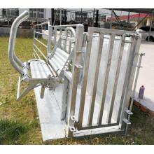 Ovejas Goat Yard Equipment Catcher utiliza controlador