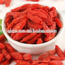 2017 gansu dried goji berry the best price