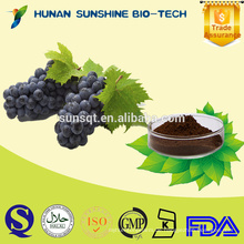 20% 30% Polyphenol Traubenkernextrakt / Traubenschalenextrakt für Rotwein
