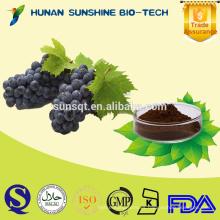 Extracto de semilla de uva polifenol 20% 30% / extracto de piel de uva para vino tinto
