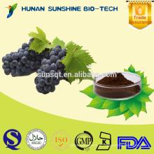 Extrato da semente de uva do polifenol de 20% 30% / extrato da pele da uva para o vinho tinto