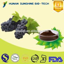 Экстракт 20% 30% полифенолов виноградных косточек экстракт/кожица винограда для красного вина