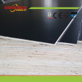 Poplar Main Material and Construction Plywood Used