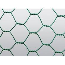 Chicken Wire Mesh Hexaganol Fence Great Price
