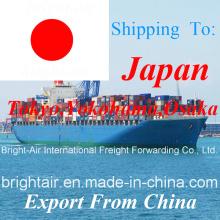 Proveedor de Logística Sea Container Shipping Forwarder de China a Japón