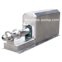 GF food sanitary grade stainless steel single screw pump