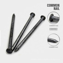 "All Size 2""-6""Galvanized Iron Nails with Nice Price"