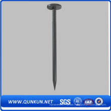 Galvanized Smooth Umbrella Head Roofing Nails on Sale