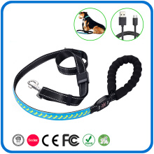 Glow In The Dark Light Up Leather Dog Leads Leash