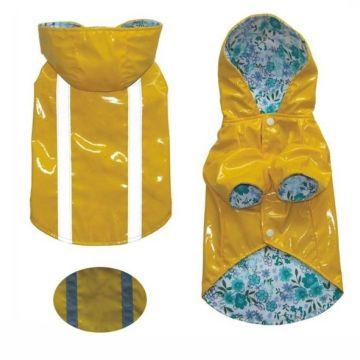 Pet Training Rain Jacket for dog