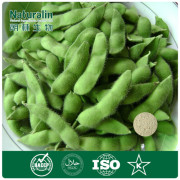 100%Pure Natural Soybean Extract Powder 40% (isoflavones)