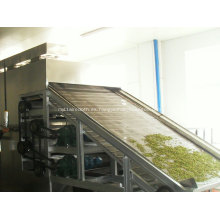 Secador de banda de malla de acero inoxidable de alta calidad