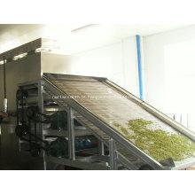Secador de correia de malha de aço inoxidável de alta qualidade
