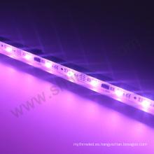 Perfil de barra de vivienda precio de tira de aluminio 5050 rgb multi color 6803 ic 12v luz de tira llevada
