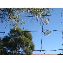 PE Flower Net, Garden Plastic Net, Plant Support Net