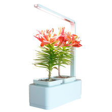 Smart hydroponic system with led light for planting flower