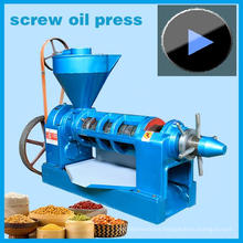 Hot Sales! 4.5ton/Day Groundnut Oil Expeller, Peanut Machine Model Yzyx10-J