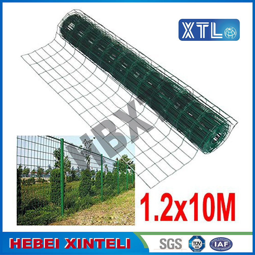 Green Holland Wire Mesh Fence