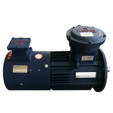 YE3 Dewert Variable Frequency Motors untuk Reducer