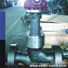CF8, CF8m, CF3, CF3m Stainless Steel Pressure Sealed Bonnet Globe Valve with RF or Bw Ends