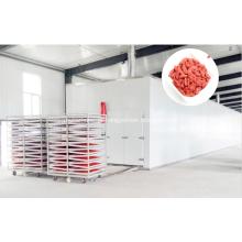 Secador Wolfberry de boa qualidade e mais eficiente em termos energéticos
