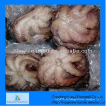 Leckere gefrorene hervorragende Qualität reichlich Oktopus schnelle Lieferung