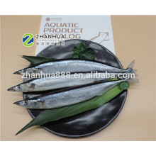 hot sale  frozen pacific saury for market whole round