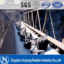 Matéria têxtil de poliéster resistente Nn150