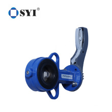 Lug Type CI Body Wafer Disc Ductile Iron Flange Butterfly Valve with Handwheel