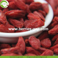Wholesale Premium Nutrition Eu Standard Goji Berry