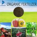 Fertilizante orgânico de vegetais, Frtuit, árvore, cultura e outras plantas