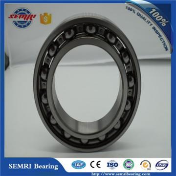 China OEM Service Carbon Bearing de la fábrica de Shandong (6305)