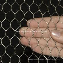 Electric Galvanized Chicken Hexagonal Wire Mesh